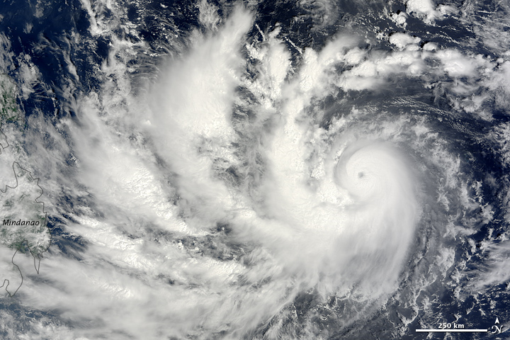 super typhoon parma